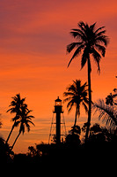 Sanibel Lighthouse Palms I